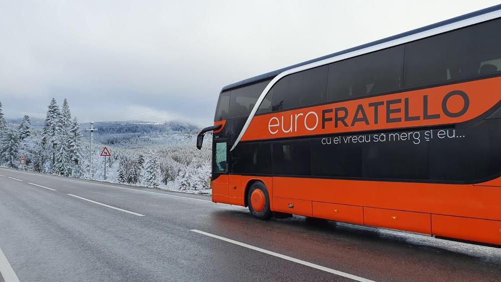 Cum alegi firma potrivita pentru transport international de colete